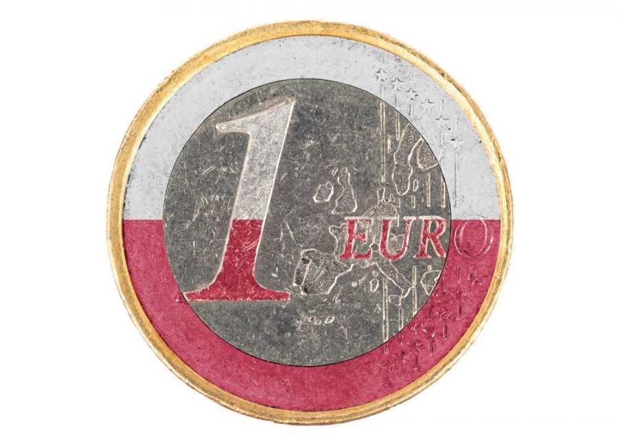 Euro i polska flaga