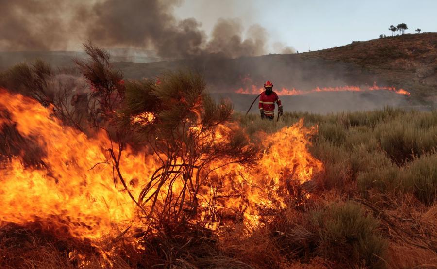 Pożar lasów w Portugalii