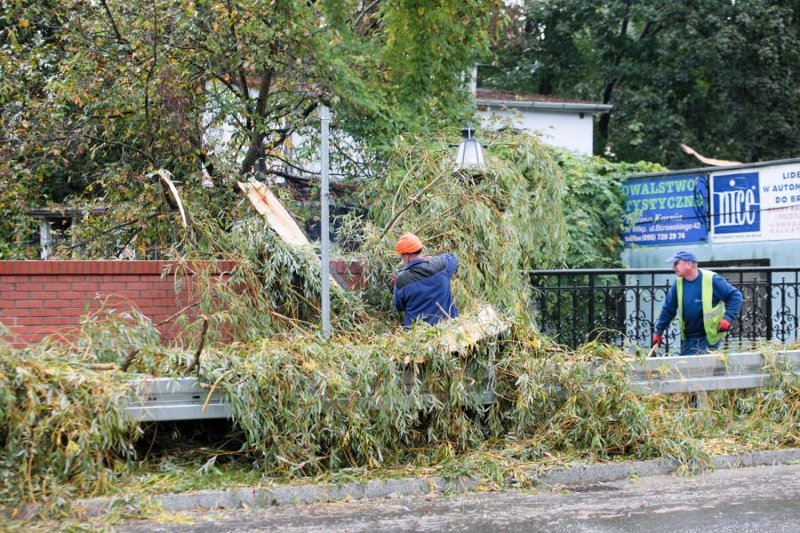 Zniszczenia po przejściu orkanu Ksawery