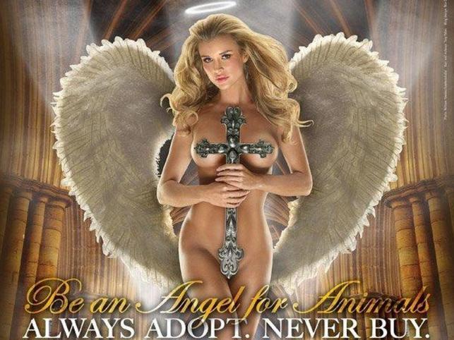 Joanna Krupa zachęca do adopcji zwierząt