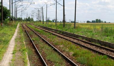 Chcesz jechać pociągiem? Bilet musisz kupić miesiąc wcześniej