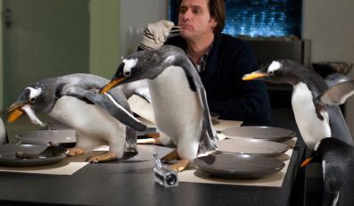Jim Carrey i jego pingwiny
