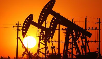 Geolodzy odkryli złoża ropy łupkowej