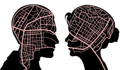Płeć mózgu - czy naprawdę istnieje?