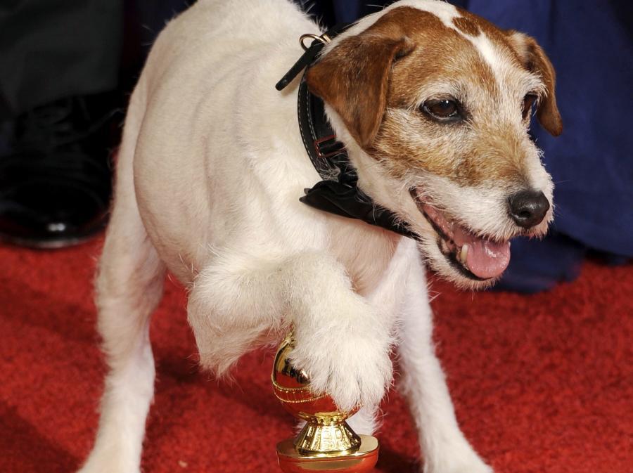 Pies Uggie i Złoty Glob dla filmu \
