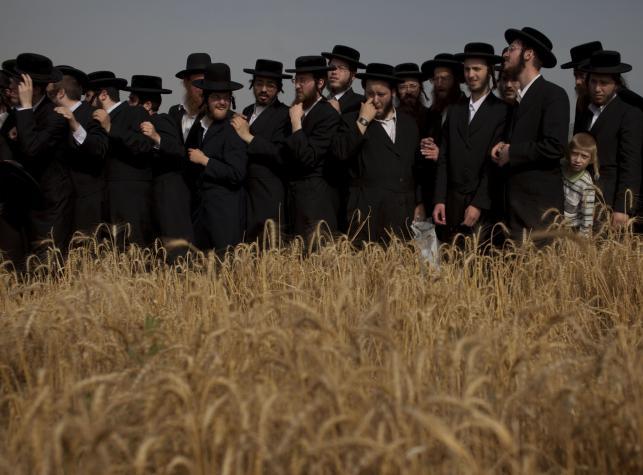 Żydowskie święto Szawuot