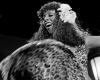 Donna Summer odeszła 17 maja 2012 roku