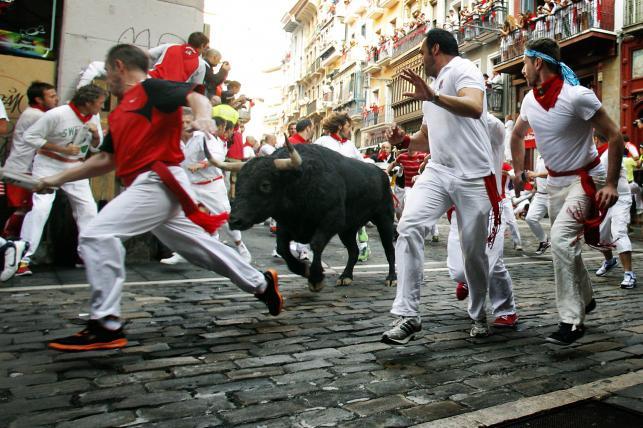 San Fermin - bieg z bykami w Pampelunie