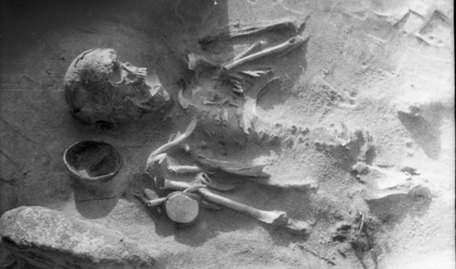 Grób szkieletowy szamana z cmentarzyska łużyckiego w Przeczycach