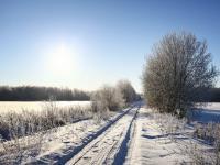 PROGNOZA POGODY na weekend: Śnieg i wiatr, w niedzielę słońce