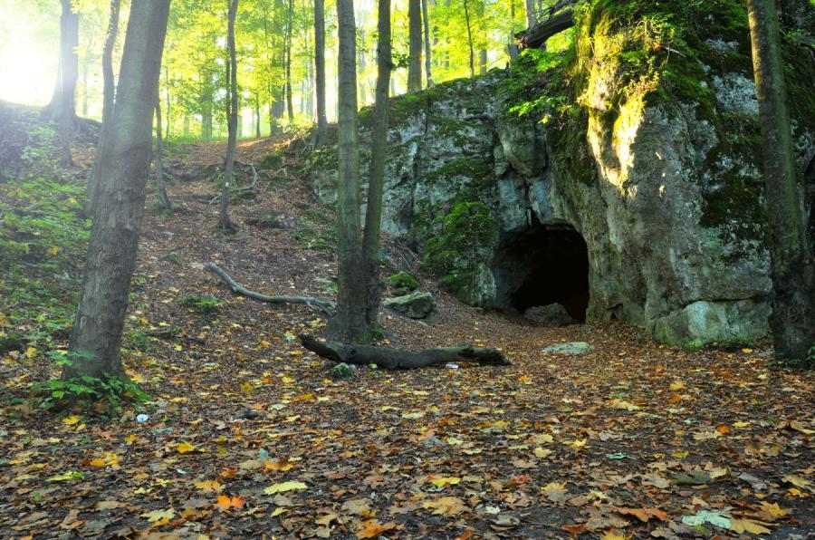 Jaskinia Jury Krakowsko-Częstochowskiej
