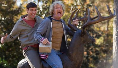 "Jim Carrey i Jeff Daniels w filmie ""Dumb and Dumber To"""
