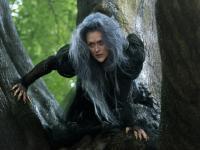 """""""Tajemnice lasu"""": To nie jest wesoła bajka [ZDJĘCIA]"""