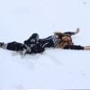 Beyoncé taż robi orzełki na śniegu?