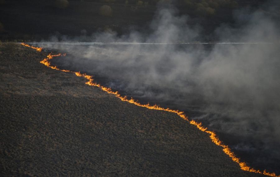 Pożar w strefie czarnobylskiej