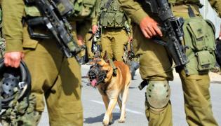 Izraelscy żołnierze z psem