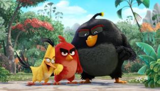 """""""Angry Birds"""": I kto będzie naprawdę wściekły?"""