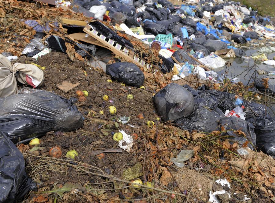 Śmieci z Niemiec lądują w naszych lasach