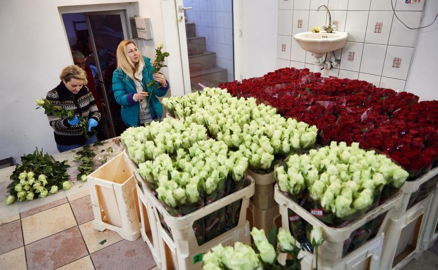 Róże wsparcia dla Lecha Wałęsy